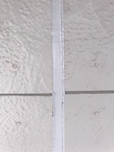 雨どいの詰まりもしっかり洗浄!屋根カバー工法と外壁塗装 刈谷市